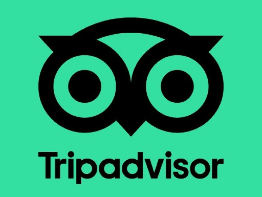 Tripadvisor supera las expectativas y ronda los 200 millones de ingresos